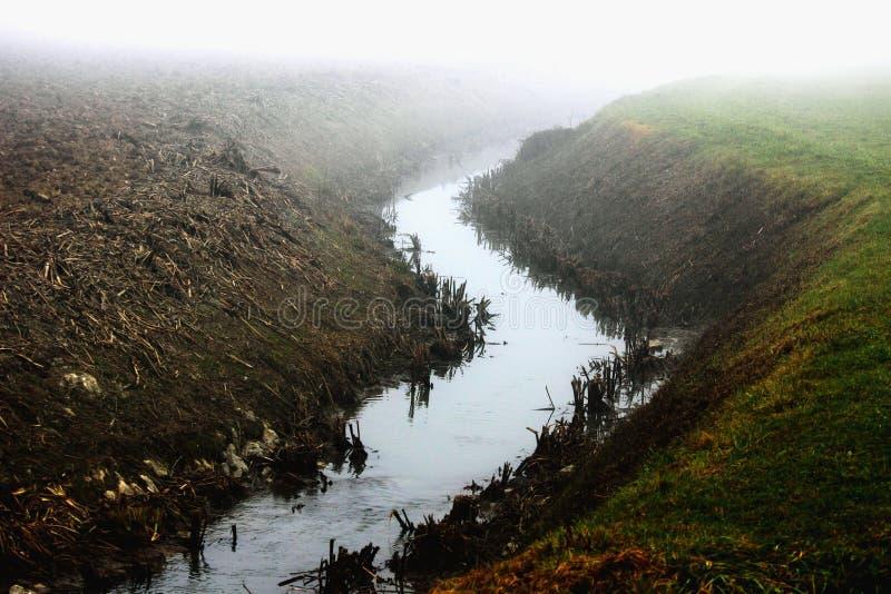Nebeliges Land stockfoto