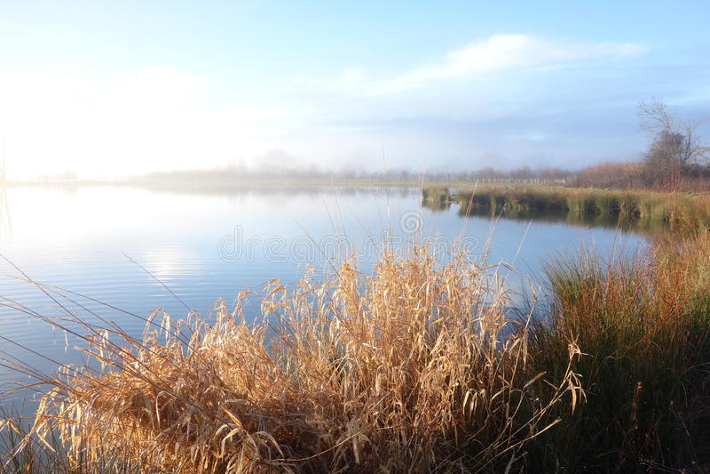 Nebeliges Sonnenlicht des Sees morgens lizenzfreies stockbild