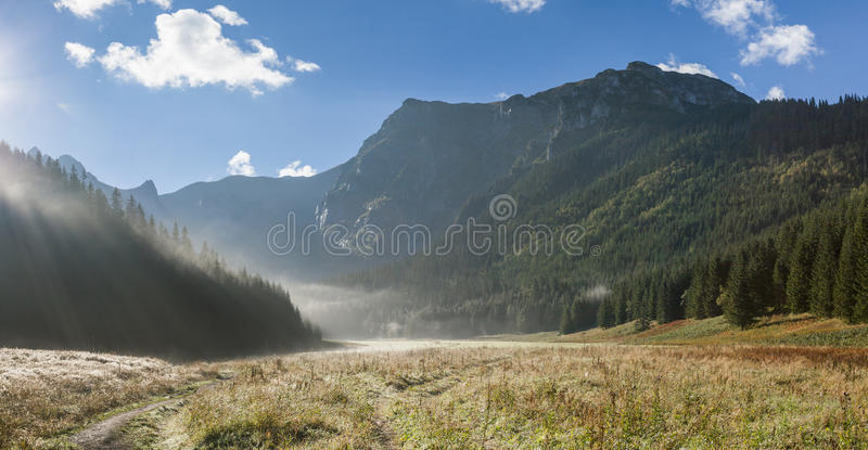 Nebeliges Tal in den Bergen lizenzfreies stockfoto
