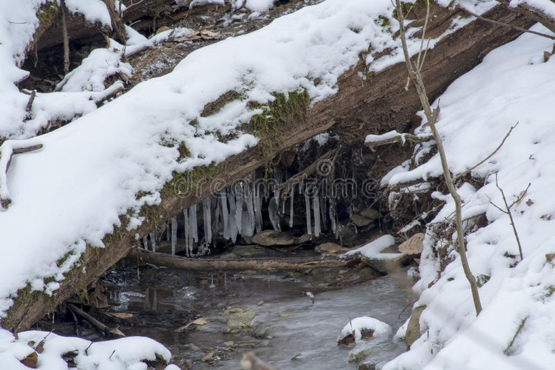 Nebenfluss in gefrorener Winterlandschaft stockbild