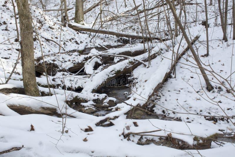 Nebenfluss in gefrorener Winterlandschaft stockfotos