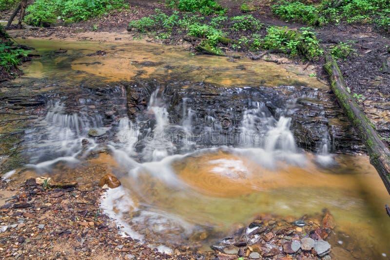 Nebenfluss im Schatten-Nationalpark stockbilder