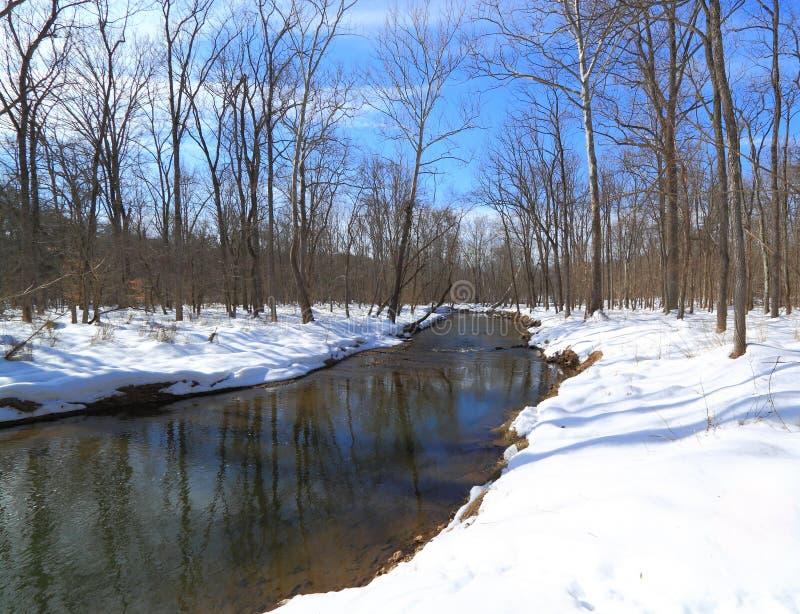 Nebenfluss im Schnee-Wald lizenzfreie stockfotografie