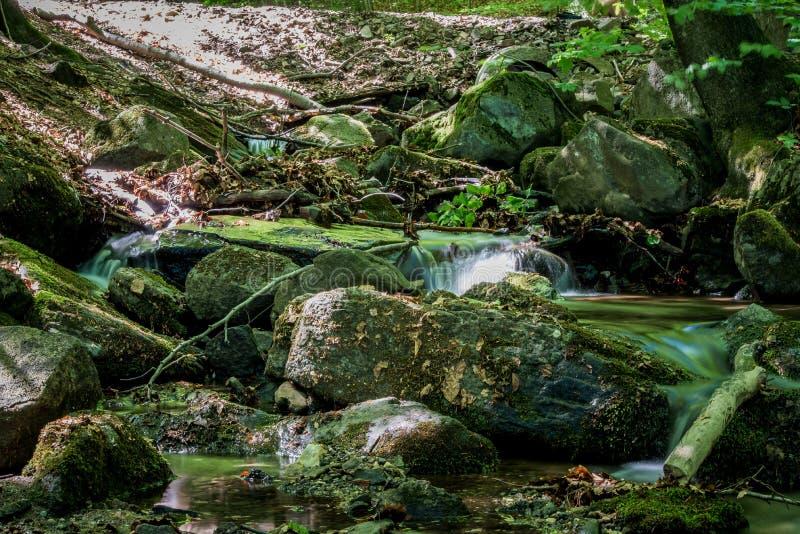 Nebenfluss im Wald und in den Steinen bedeckt mit Moos 2 lizenzfreie stockbilder