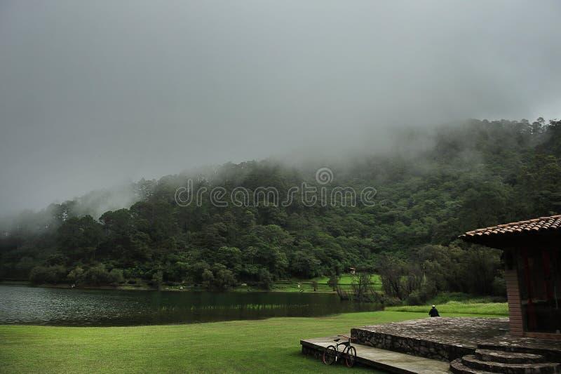 Neblina de Paisaje photographie stock libre de droits