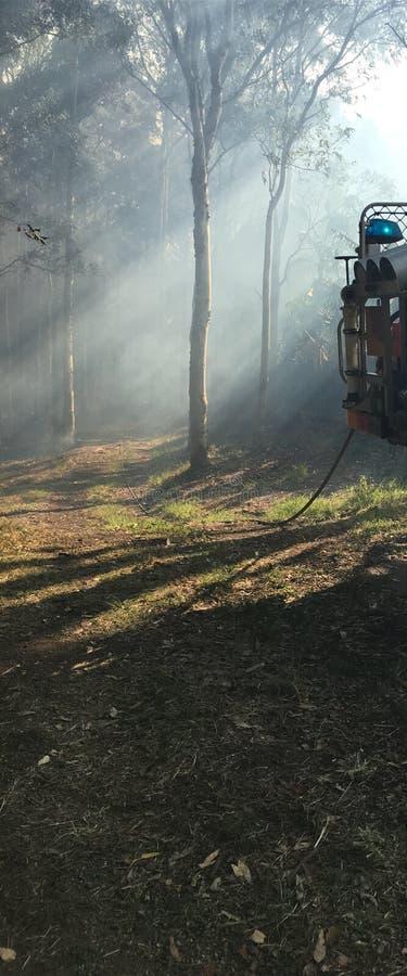 Neblina del sol del humo del coche de bomberos imagen de archivo