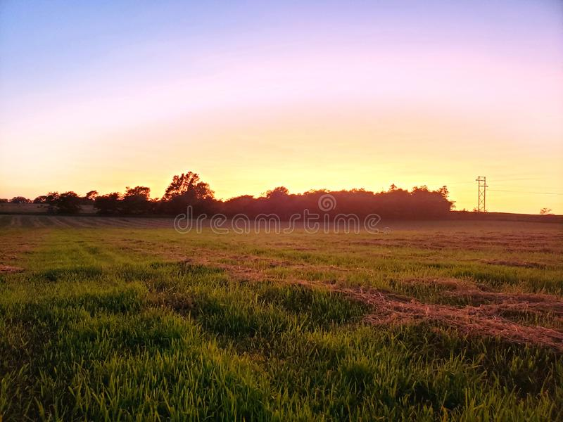 Nebraska alfalfa field. Cut, bale, hay, baler, tractor, agriculture, farm, silage, grazing, sunset, grass, clover, feed, seed, lucerne, cover, crop, farming royalty free stock photos