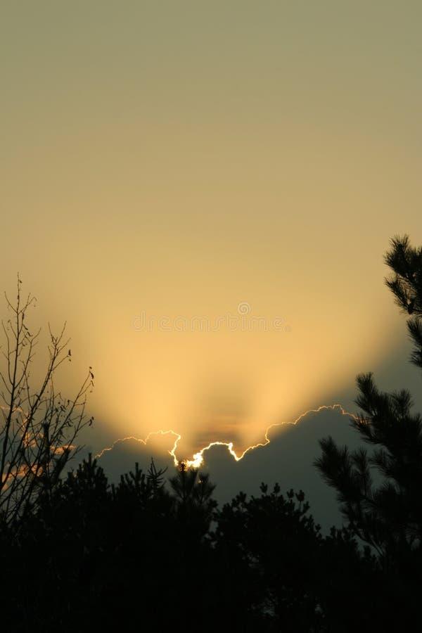 nebraska soluppgångvertical arkivfoto