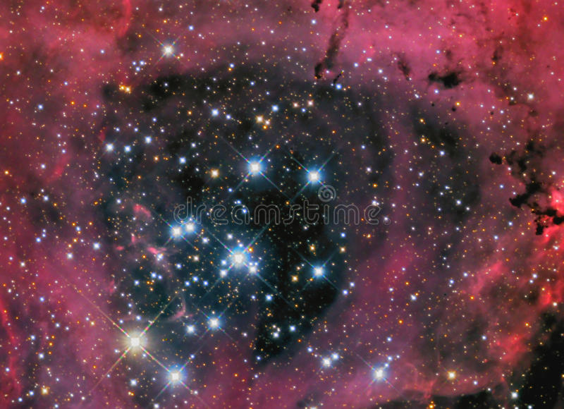 Nebula för Rosette NGC2244 arkivbild