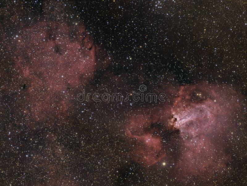 Nebulosa del cigno immagini stock