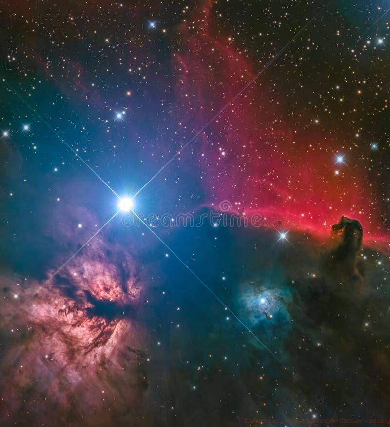 Nebulosa di HorseHead fotografia stock