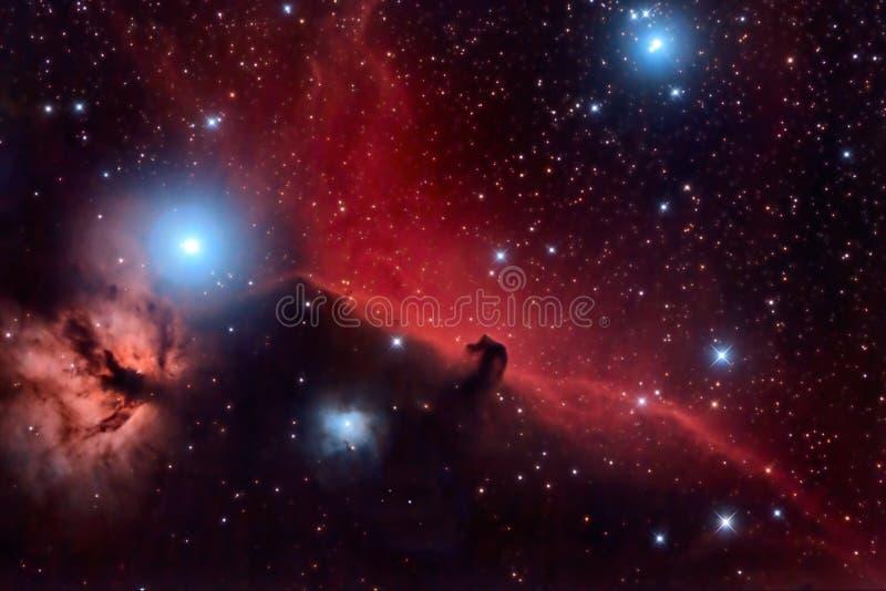 Nebulosa di Horsehead fotografia stock libera da diritti