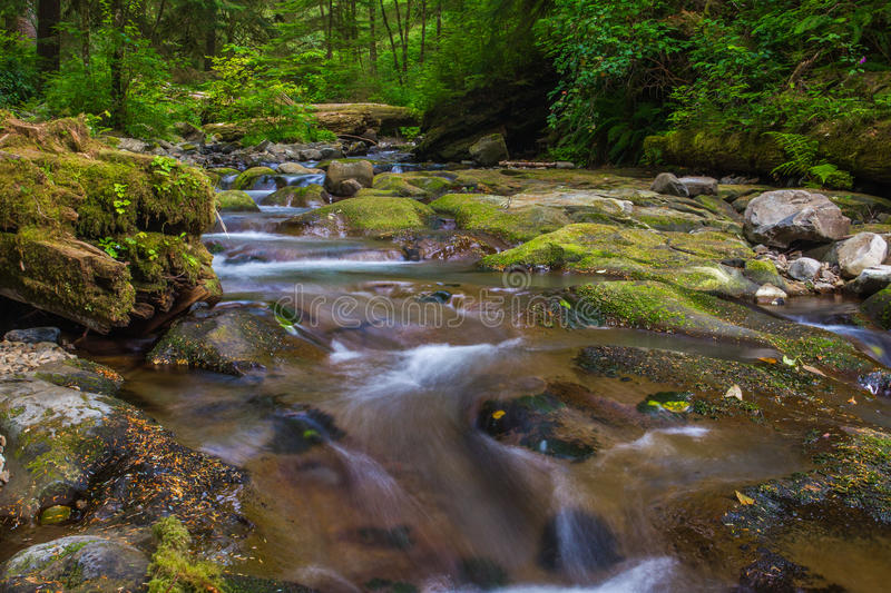 Necarney Creek. Flowing To Smuggler Cove In Oswald West State Park, Oregon royalty free stock photo