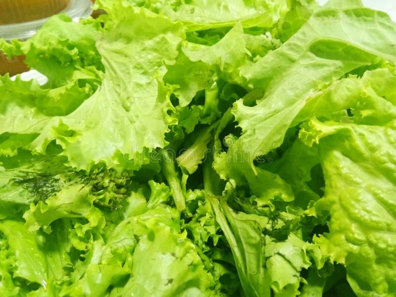 Necesite algunas verduras verdes imagenes de archivo