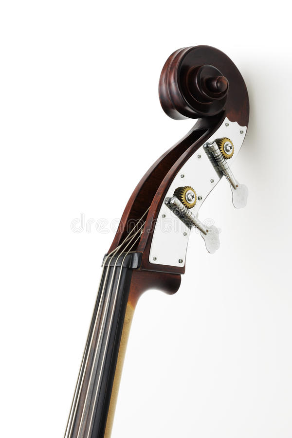 Neck of contrabass. Neck of contra-bass on white background stock photo