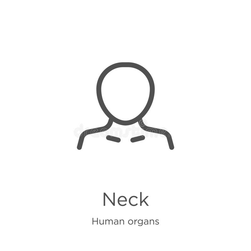 neck icon vector from human organs collection. Thin line neck outline icon vector illustration. Outline, thin line neck icon for vector illustration