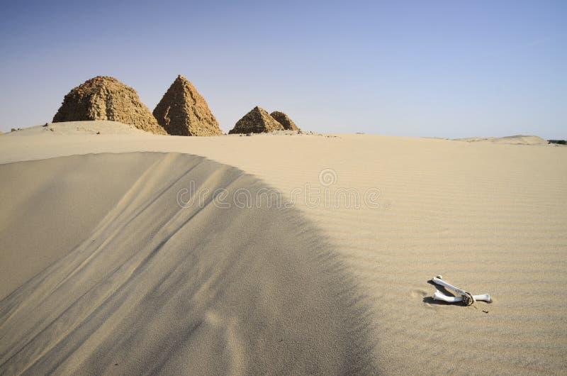 Necropolis Nuri w Sudan zdjęcia stock
