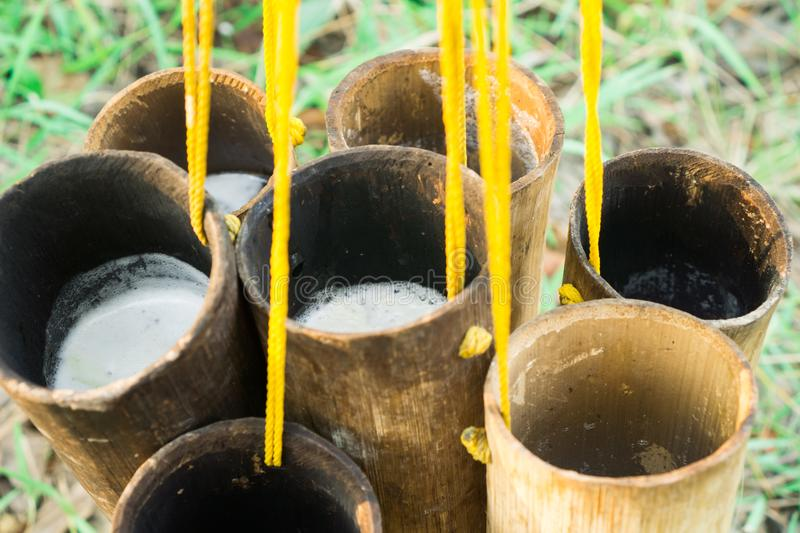 Nectar from sugar palm in bamboo. Folk way. Hang with yellow rope. royalty free stock photography
