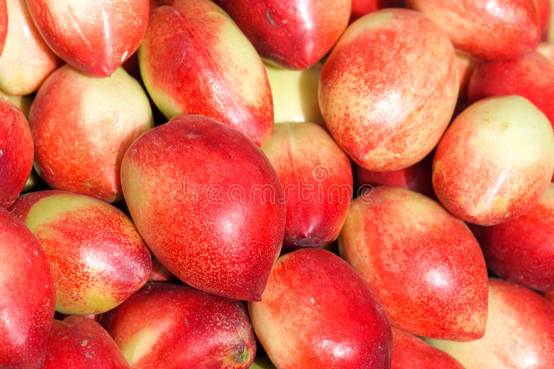 Download Nectarine stock image. Image of closeup, close, glabrous - 25822227