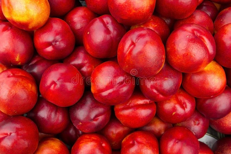Nectarine. Close up of a large collection of red nectarine stock photography