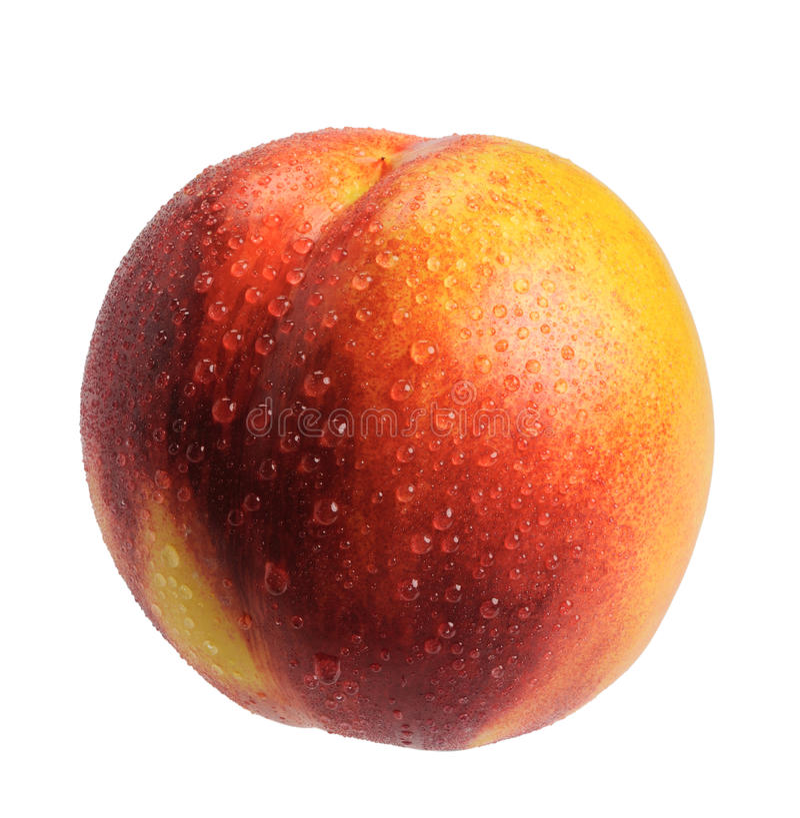 Nectarine, d'isolement image stock