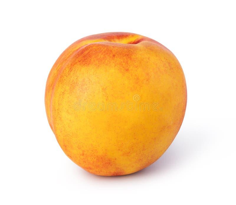 Nectarine. Fruit isolated on white background royalty free stock photo