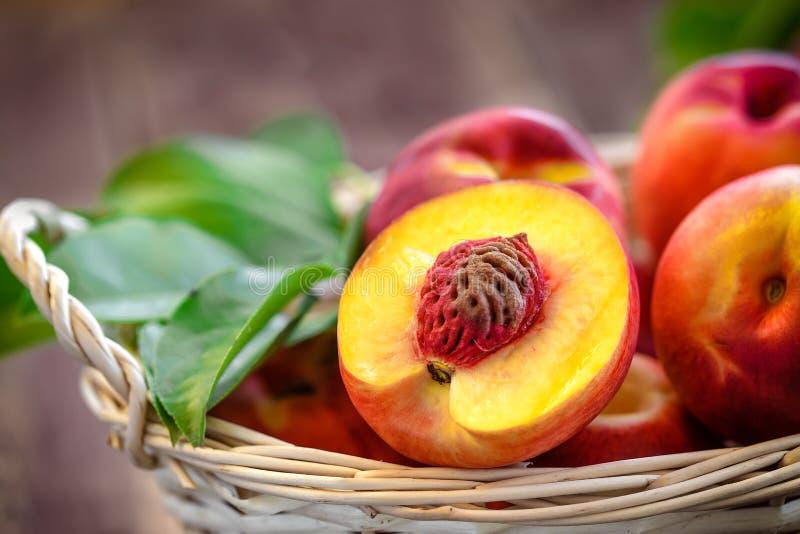 Nectarine stock photography