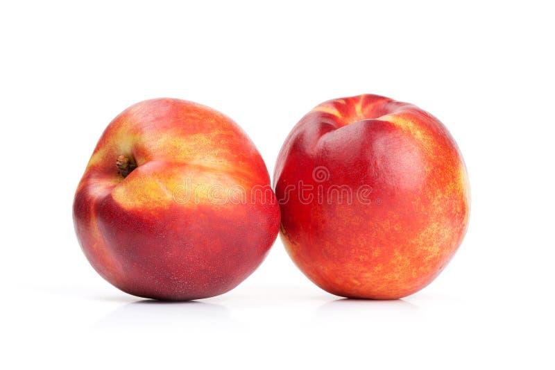 Nectarine fruits. On white background royalty free stock images