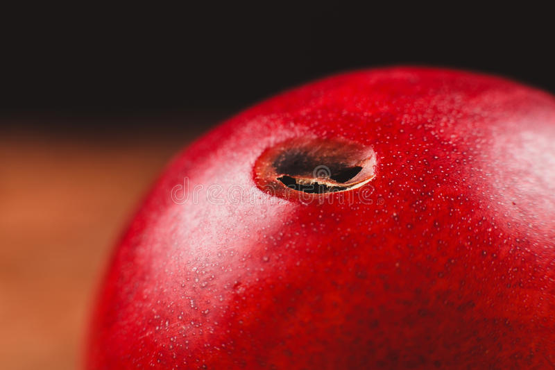 Nectarine with hole in it. A red nectarine with a hole from a worm in it stock photo
