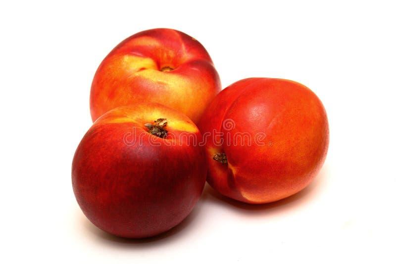 Nectarines. Three nectarines isolated on a white background royalty free stock image