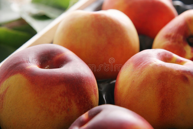 Nectarines. Nectarines in a box. Green leaves on the background stock photography
