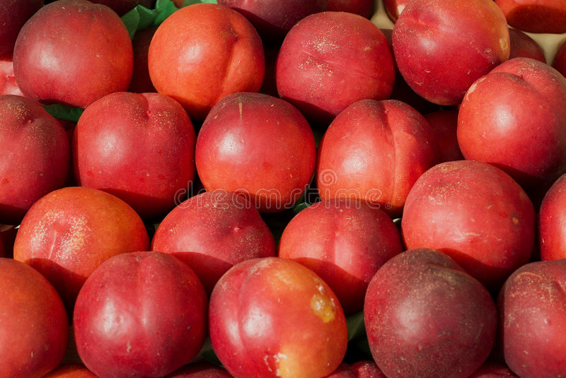 Nectarines photo libre de droits