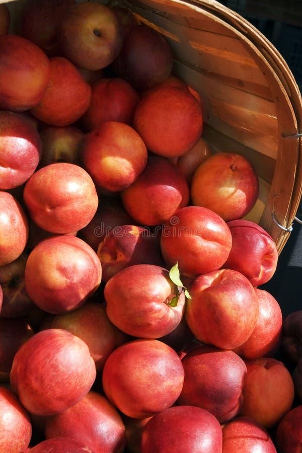 Nectarines stock foto