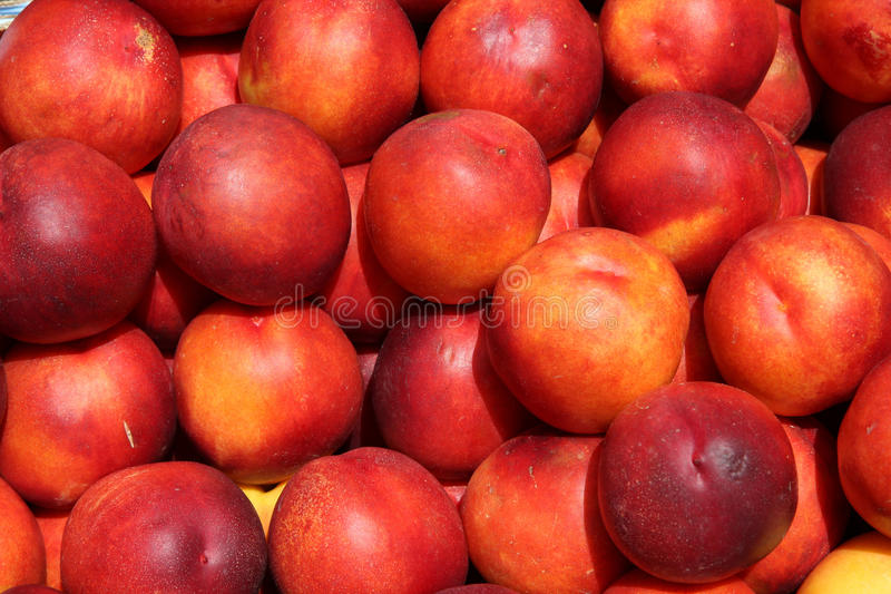 Nectarines. Fruit stand with nectarines at a marketplace in Mainz, Germany. Farmers market stock photos