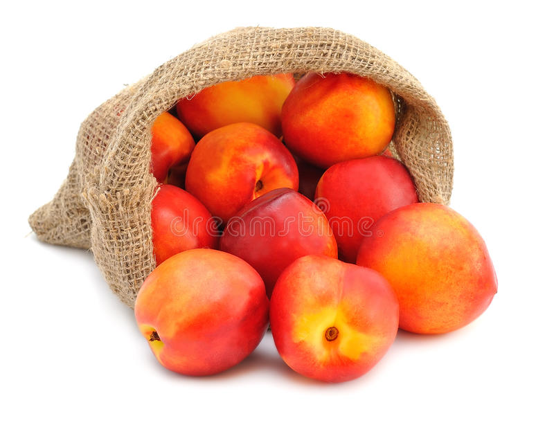 Download Nectarines stock photo. Image of traditional, garden - 25588846
