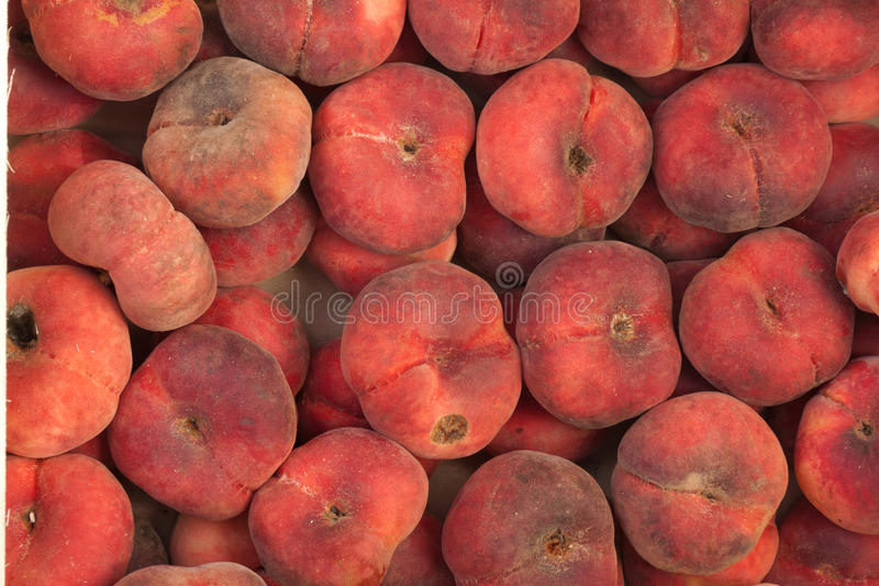 Download Nectarines stock image. Image of nectarine, vegetables - 26257537