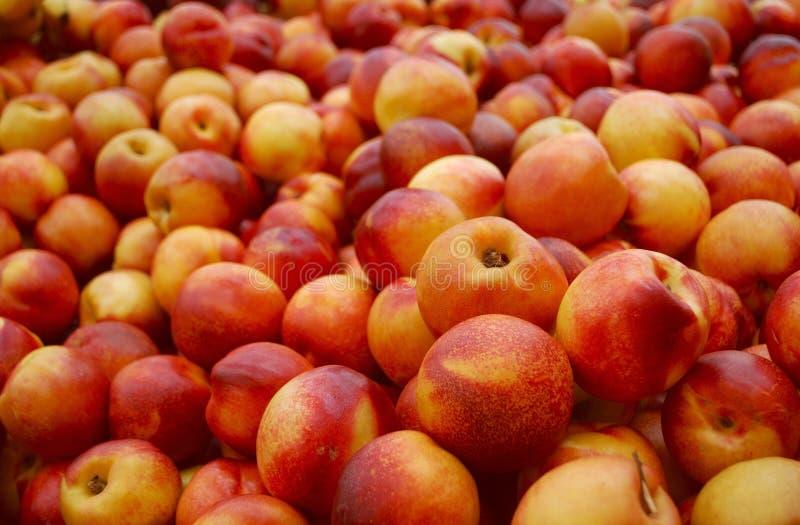 Nectarines stock foto's