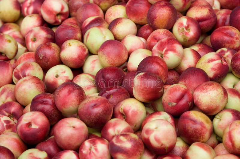 Nectarines. A large number of nectarines stock photos