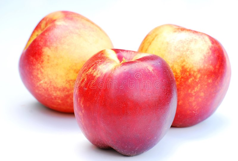 Nectarines. Shot of three delicious and ripe nectarines royalty free stock photography