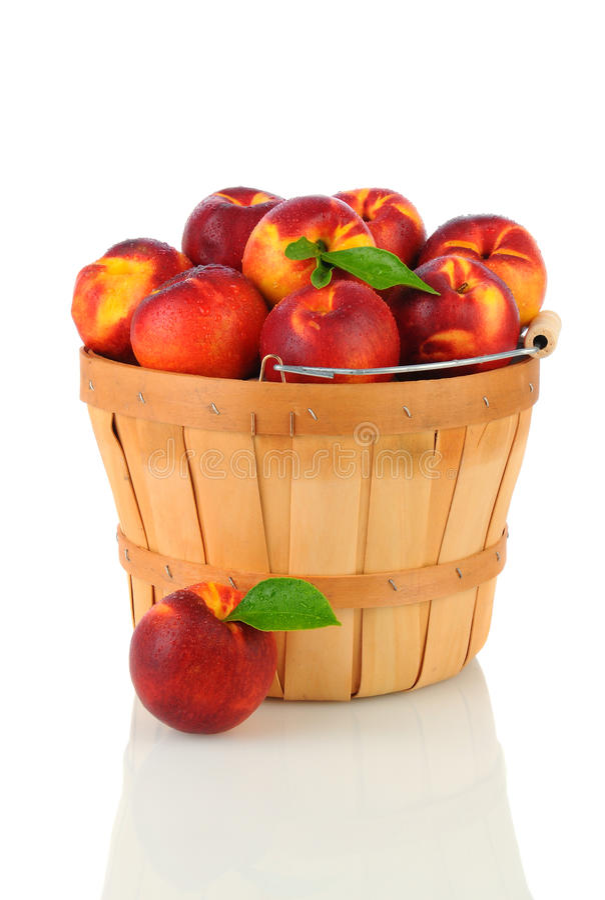 Nectarines in Basket royalty free stock image