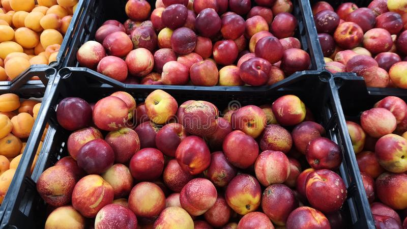 Nectarines lying in boxes in supermarket. Detail of nectarines fruit from supermarket royalty free stock photo