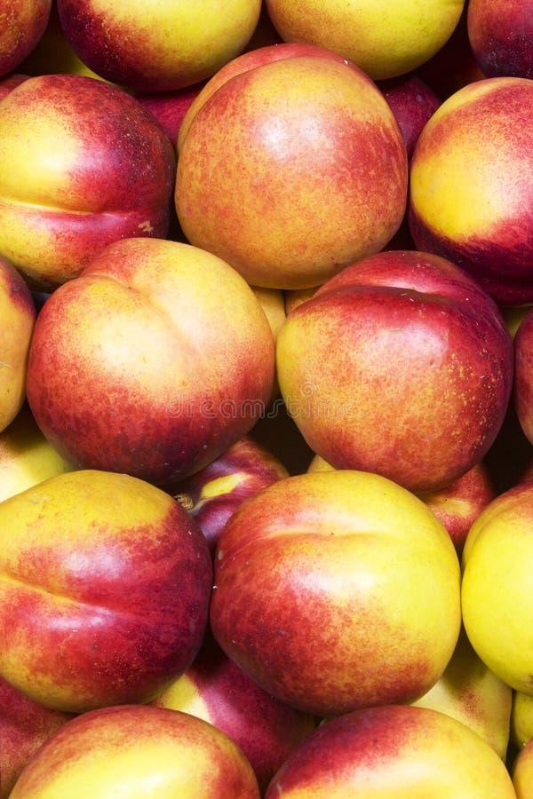 Nectarines mûres photographie stock libre de droits