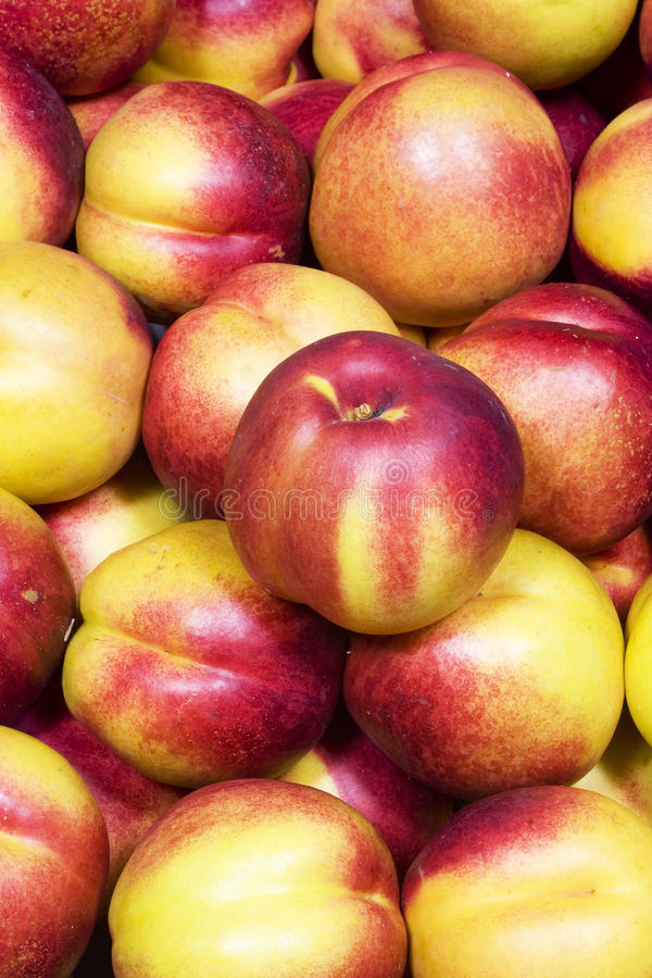 Nectarines mûres photographie stock