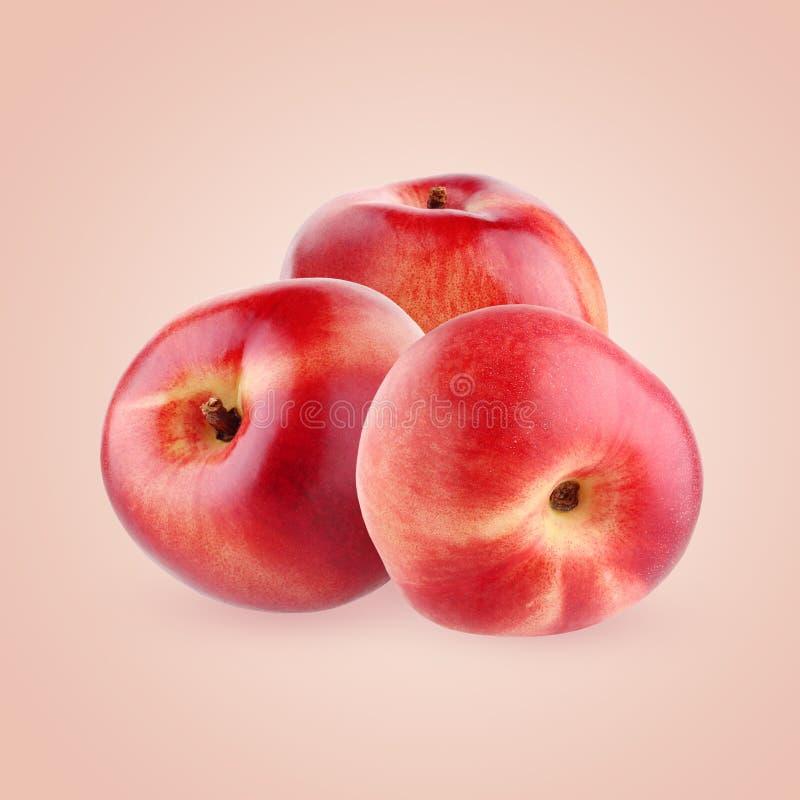 Nectarines on pink background stock photo
