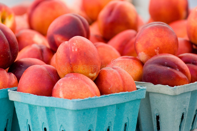 Download Nectraines stock photo. Image of farm, kitchen, delicious - 1131356