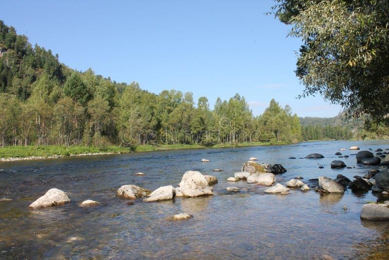 Nedalco реки Katun от источника августа 2017 стоковое фото