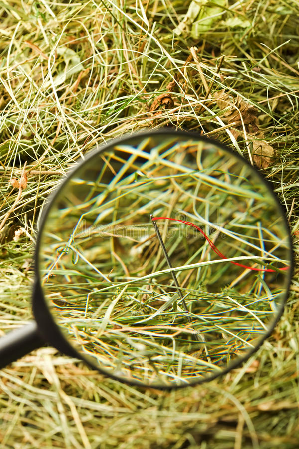 Neddle in the haystack royalty free stock images