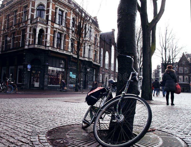 _ Nederländerna ByCycle arkivfoton