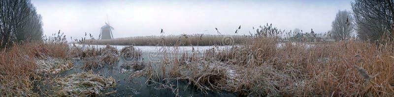Nederlands de winterpanorama stock fotografie
