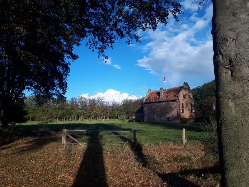 Nederlands kasteel in bos royalty-vrije stock afbeelding